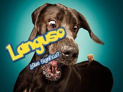 ¿Que significa Languso?